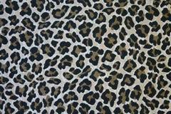 Pele do leopardo Imagens de Stock