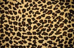 Pele do tigre Imagens de Stock Royalty Free
