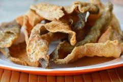 Pele fritada friável dos peixes com tempero no prato Imagens de Stock Royalty Free