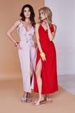 Pele longa do vestido de seda bonito 'sexy' do desgaste da pele da cara da mulher da beleza dois Imagens de Stock