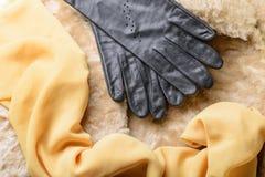 Pele, luvas e lenço da pele de carneiro Imagem de Stock