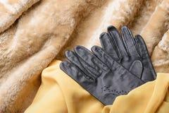 Pele, luvas e lenço da pele de carneiro Foto de Stock Royalty Free