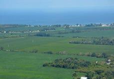 Pelee-Insel-Ackerlandantenne Lizenzfreie Stockbilder