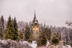 Peles Castle. View of Peles Castle in one misty winter morning stock photo