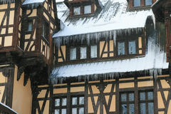 Peles castle in winter Stock Images