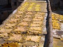 Peles de carneiro que secam em um telhado fotografia de stock royalty free