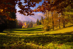 Peles kasztelu park zdjęcia royalty free