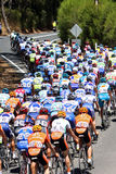 Peleton. In hill climb of Stage 2 in 2009 Tour Down Under, Adelaide, Australia Stock Photography
