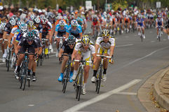 Peleton Tour Down Under 2010 Royalty Free Stock Photo
