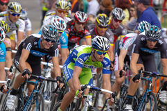 Peleton Tour Down Under 2010 Stock Photography