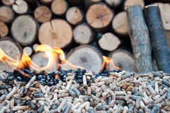 Peletts, biomass and woods Stock Image