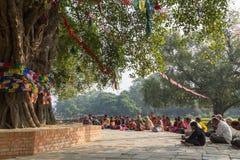 Pelgrims die onder Bodhi-boom in Lumbini, Nepal bidden stock afbeelding