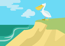 Pelican beach flat design cartoon vector wild animals birds. Pelican on the beach river bank habitat flat design cartoon vector wild animals birds. Flat zoo Stock Photography