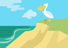 Pelican beach flat design cartoon vector wild animals birds. Pelican on the beach river bank habitat flat design cartoon vector wild animals birds. Flat zoo Vector Illustration