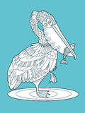Pelican bird with fish color vector illustration. Pelican bird with fish color fashion book vector illustration. Lace pattern Royalty Free Stock Photos