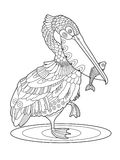 Pelican bird with fish coloring book vector. Illustration. Black and white lines. Lace pattern Stock Photo