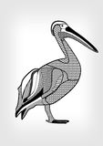 Pelican, black and white drawing of water bird with hatched and patterned body parts.  animal on gray gradient background. Template for tattoo, emblem, zoo Royalty Free Stock Photos