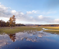 Pelican Creek at sunset in next to Yellowstone Lake in Yellowstone National Park Stock Photos