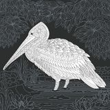 Pelican in black and white style Royalty Free Stock Images