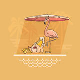 Pelican and flamingo  relaxing by the pool. Vector illustration. Stock Photos