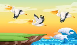 Pelican flying on the sky stock illustration