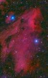 Pelican Nebula in cygnus. Pelican Nebula in the constellation of Cygnus Royalty Free Stock Image