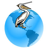 Pelican pollution. Of the environment Royalty Free Stock Image