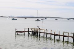 Pelican resting on jetty. A Pelican taking time out on jetty at Coffin Bay in South Australia Stock Photography
