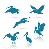 Pelican silhouettes Royalty Free Stock Photos
