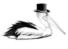 Pelican with top hat and monocle Stock Image