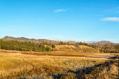 Pelican Valley Landscape at Yellowstone royalty free stock images