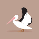 Pelican. Vector Illustration Stock Images