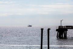 Pelicanos cais e silhueta do barco do camarão fotografia de stock royalty free