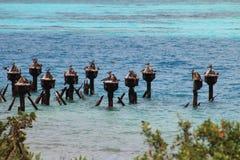 Pelicanos empoleirados em ruínas da doca Fotos de Stock
