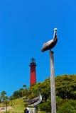 Pelicanos pelo farol Imagens de Stock
