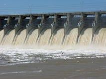 Pelicanos que pescam abaixo da represa Foto de Stock