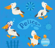 Pelicans. Cute cartoon set of four pelicans on a blue background. Eps10 Royalty Free Stock Photo