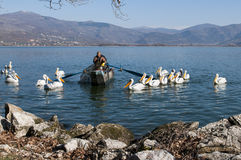 Pelicans and fishermen Royalty Free Stock Image