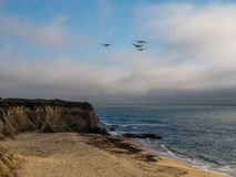 Pelicans fly above Half moon bay beach stock photos