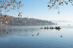 Pelicans in the lake. Pelicans and other birds in the lake with background the town of Kastoria, Greece Stock Images