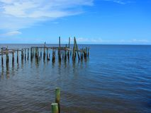 Pelicans and sea birds on old wooden piers royalty free stock photo