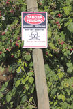 Peligro Pesticide Sign Stock Image