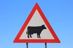 Peligro - señal de tráfico que cruza del ganado (vaca) - tenga cuidado para los animales domésticos Fotografía de archivo libre de regalías