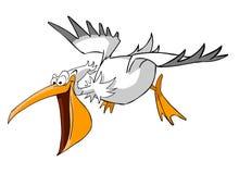 pelikan Stock Illustrationer
