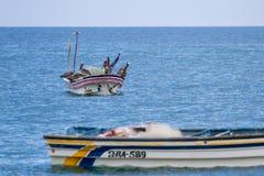 Pelikan på ett fartyg Arkivfoton