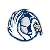 Pelikan påskyndar Retro fotboll royaltyfri bild