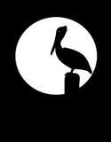 Pelikan-Schattenbild Stockbild