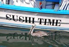 Pelikan som söker efter lunch Arkivbild