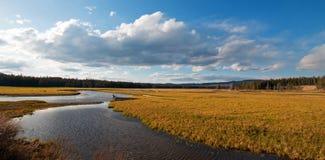 Pelikan zatoczka przy zmierzchem w Yellowstone parku narodowym w Wyoming Zdjęcie Stock