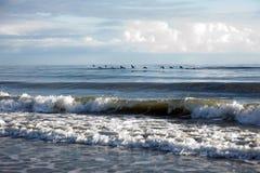 Pelikane, die über die Brandung an einem Strand fliegen lizenzfreie stockbilder